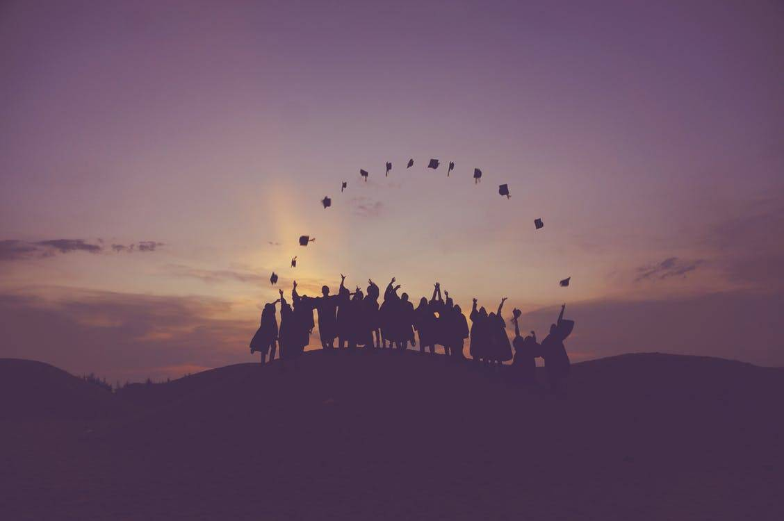 Bachelor Programs 2018-2019